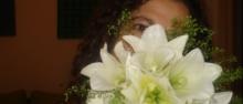 5 Flores a Oferecer no Dia dos Namorados que não Rosas